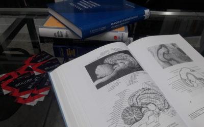 I ferormoni e l'organo vomero nasale